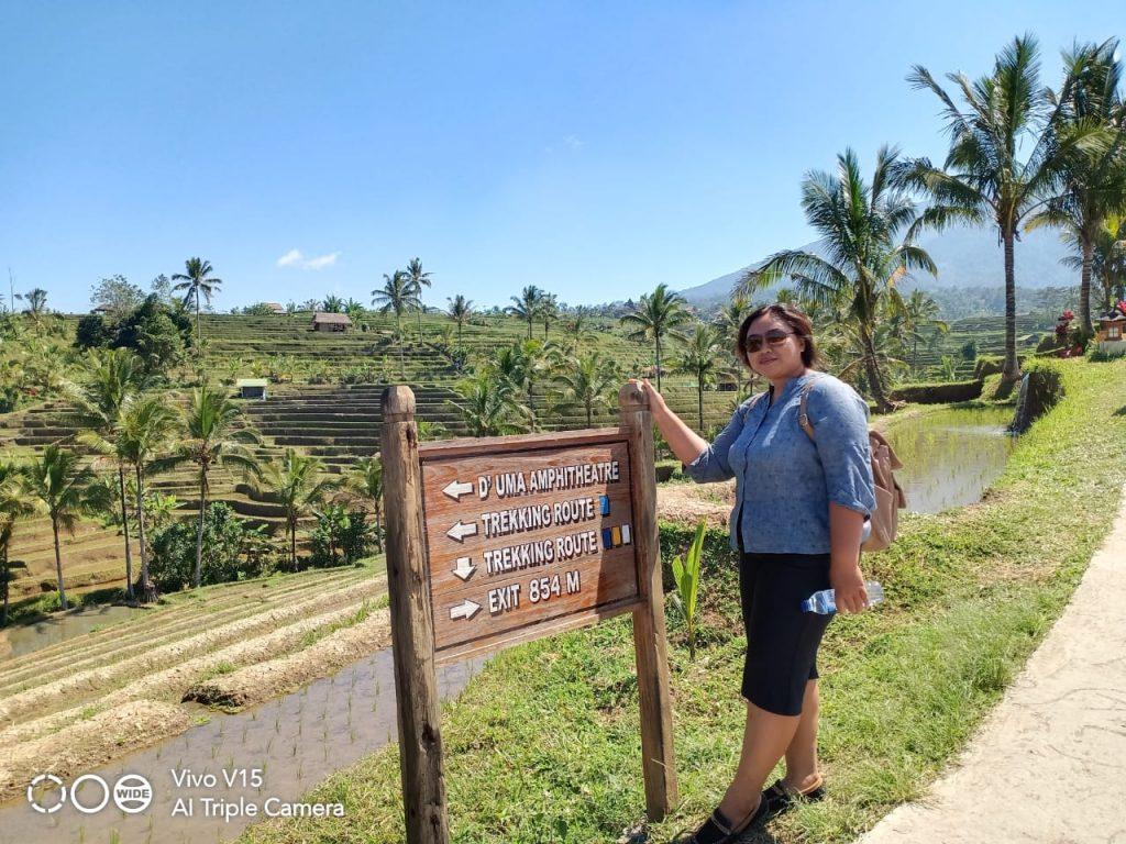 Bali Day Tours